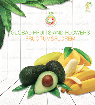 Global Friuts and Flowers Promo