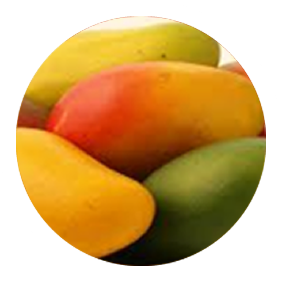 Mango global Fruits and Flowers