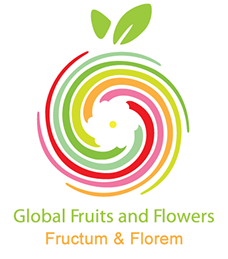 Logotipo Global Fruits and Flowers
